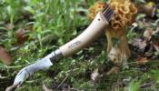 Opinel Mushroom No.08 gombász zsebkés Tölgyfa + bőr tok díszdoboz